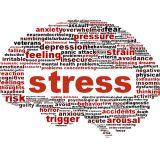 آسیب و عوامل استرس زا